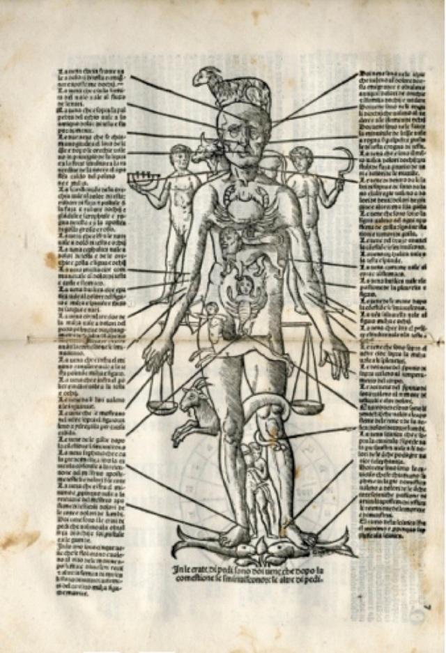 9-ser-humano-zodiacal